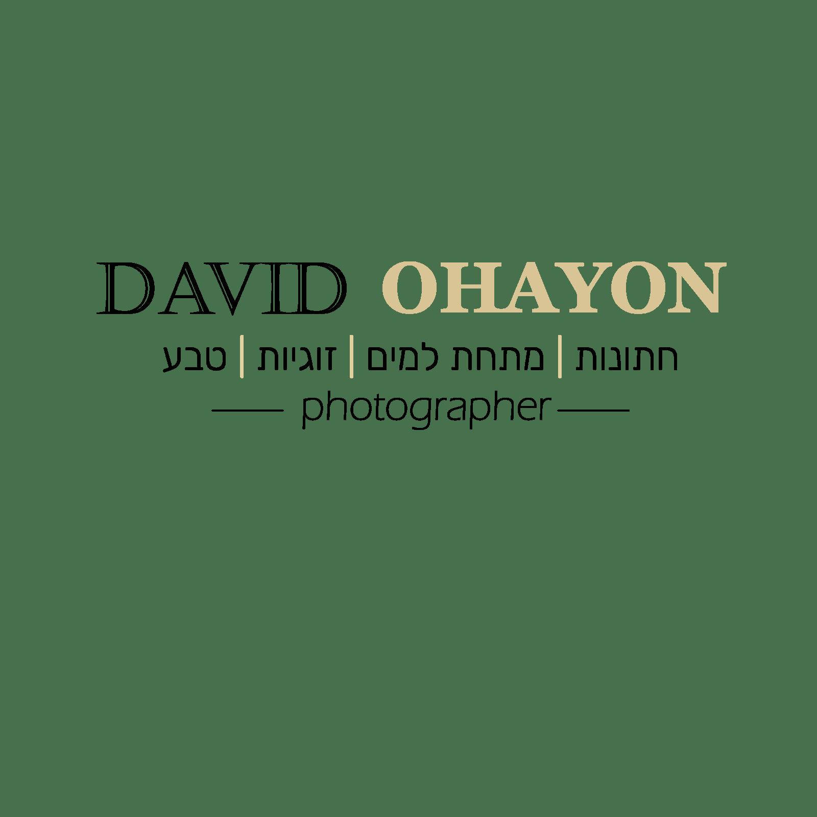 לוגו מעודכן@4x